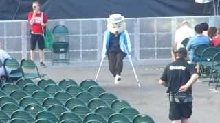 Minnesota State Fair Squirrel dancing with crutches!