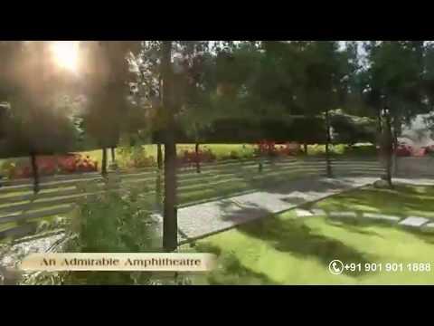 Grow Your Own Food II Container Gardening Ideas || కంటెయినర్ గార్డెనింగ్ చేయడం ఎలా? from YouTube · Duration:  5 minutes 50 seconds