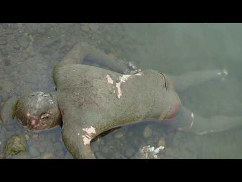 В воде обнаружено тело человека