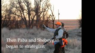 Our Kansas Pheasant, Quail, and Goose Hunting