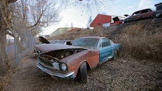 Фото с обложки Steve Spots A 1965 Mustang 2+2 Fastback - Junkyard Gold Preview Ep. 4