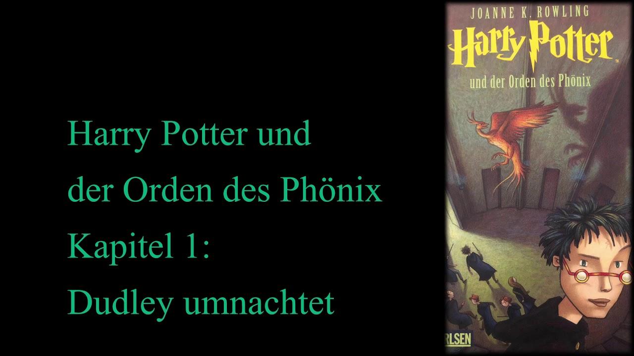Harry Potter Und Der Orden Des Phonix Horspiel Kapitel 1 Dudley Umnachtet Youtube