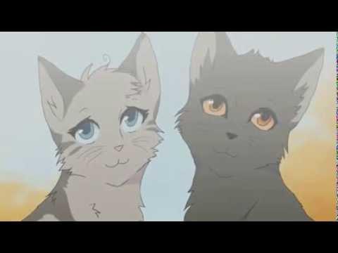 коты воители крутобок и серебрянка. Песня (коты воители) - Серебрянка и Крутобок скачать mp3 и слушать онлайн