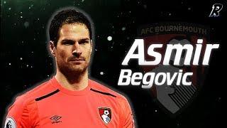 Asmir Begović 2017/18 Amazing Saves   Afc Bournemouth