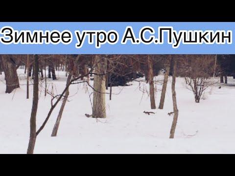 Зимнее утро А.С.Пушкин стихотворение