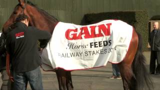 GAIN Horse Feeds Promotional Video