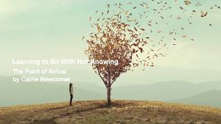 Learning To Sit With Not Knowing - By Carrie Newcomer