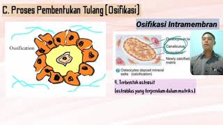 Kuliah Immunopathology & Genetic Disease.