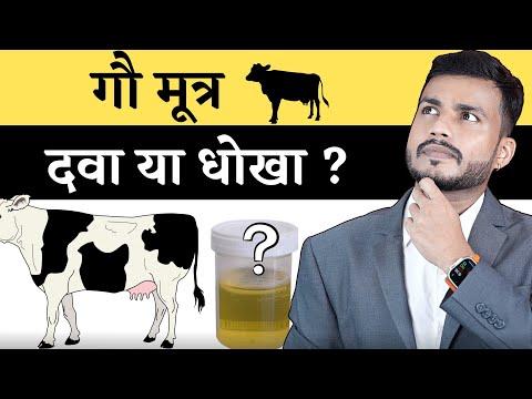 120.Gaumutra: Dwa Ya Dhokha?Gaumutra: Dwa Ya Dhokha?||Cow urin Medicine OR Myth  By Dr. Arun Mishra