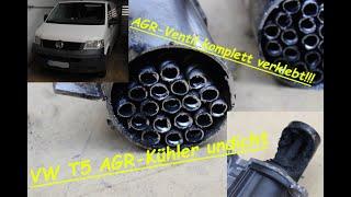 VW T5 1.9TDI AGR-Kühler defekt/undicht, Druck im Kühlsystem WARUM und wie sieht ein AGR Kühler aus??