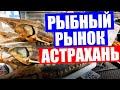 Астрахань 2020. Рыбный рынок в Астрахани. Сколько стоит черная икра, осетр, балык и вобла на рынке?