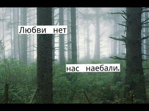 Любви нет
