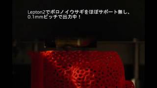 Lepton2でVoronoi Rabitを3Dプリント!
