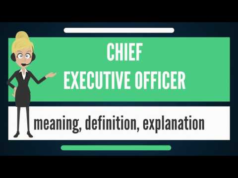 What is CHIEF EXECUTIVE OFFICER? What does CHIEF EXECUTIVE OFFICER mean?
