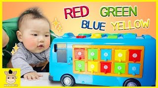 Learn colors & numbers with Tayo little bus & The Wheels on the bus Nursery Rhymes Song for kids