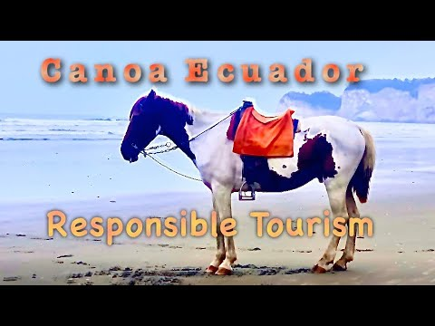 Canoa Ecuador - Low Key Surf Town