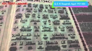 Surat Al Baqarah Ayat 197-202 Abu Adam Channel