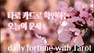 [ 타로 ] 카드 한장을 뽑아 알아보는 일일 운세 | Daily Fortune with Tarot Card/…
