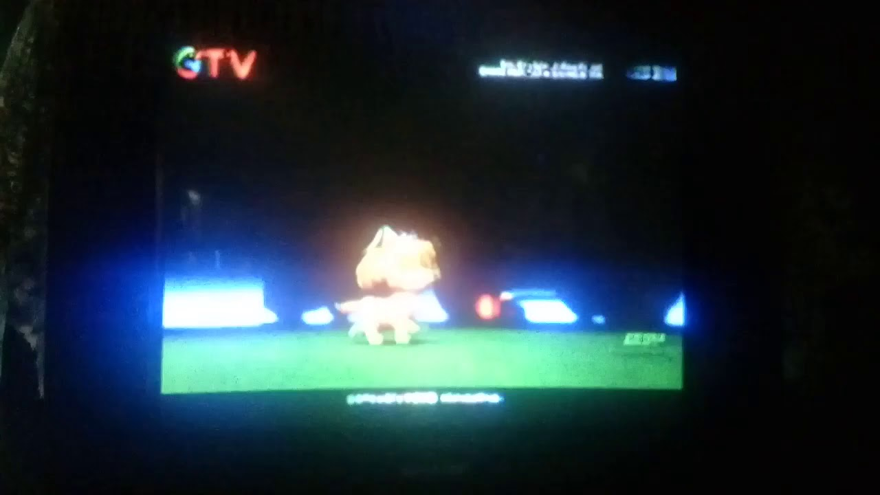 paw patrol  pups and the ghost pirate indonesian