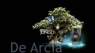 Download lagu DJ Jungle Breaks 2017 Terbaru De Arcia Tokyo Drift MP3