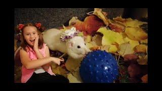 Сказка про крыску Лилу.