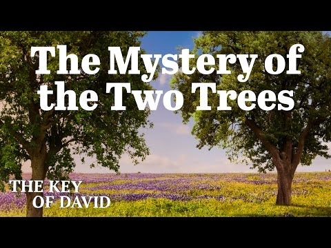 Mystery of the Two Trees - Key of David