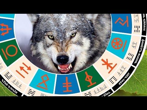 Славянский гороскоп - чертог волка 25 февраля - 22 марта