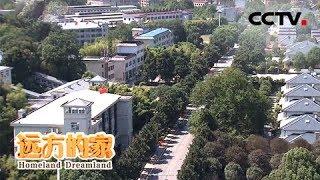 《远方的家》 20191029 长江行(58) 江水之滨寻桂香| CCTV中文国际
