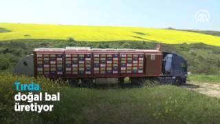 Tırda doğal bal üretiyor