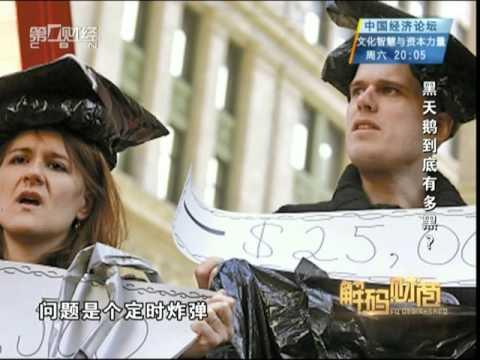 【解码财商】黑天鹅到底有多黑?