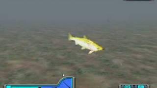 Me fishing in Pro Bass Fishing 2003
