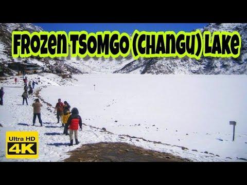 Accident at TSOMGO (CHANGU) LAKE | mobile phone | East Sikkim | India