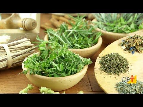Clique e veja o vídeo Curso Cultivo e Uso de Plantas Condimentares