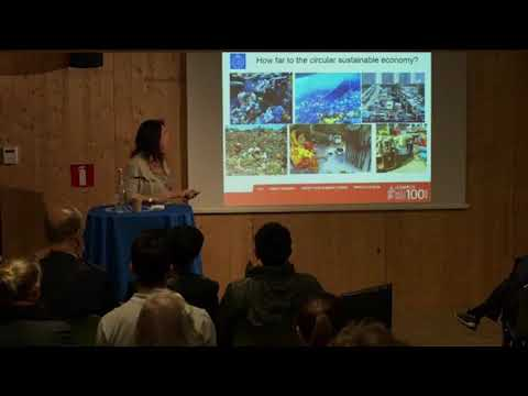 The future of sustainable energy systems | Semida Silveira