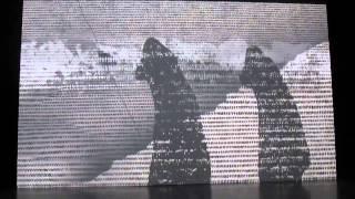 Московский дом фотографии. Михаль Ровнер. Смещения. сентябрь 2015