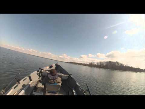 Lake Ontario Brown Trout 030616