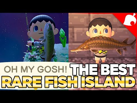 The BEST Rare Fish Island In Animal Crossing New Horizons