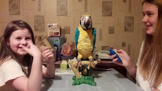 Обзор на интерактивного попугая Кеша... он пранконул нас...