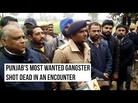 Vicky Gounder, Punjab's Most Wanted Gangster, Shot Dead In Encounter With Police