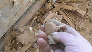 видео Какую древесину лучше использовать для строительства деревянного дома?