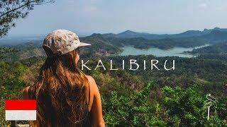 Der SELFIE NATIONALPARK von Indonesien l Backpacking Java Indonesien Tour Vlog #3