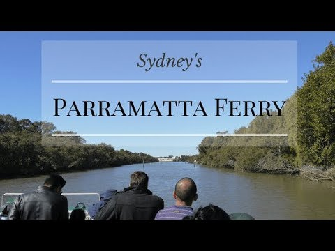Take The Parramatta Ferry! | Budget Travel In Sydney|