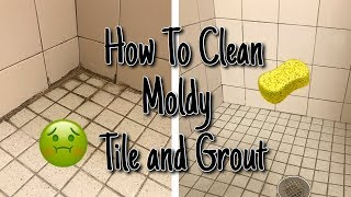 HOW TO CLEAN MOLD FROM SHOWER TILE AND GROUT // Super Satisfying Clean With Me