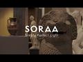SORAA Illuminates Showcases at the Ashmolean Museum in Oxford