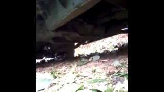ACTUAL VIDEO FOOTAGE NA AMBUSH ANG ISANG MILITARY PLATOON GROUP 18IB INFANTRY ARMY DIVISION