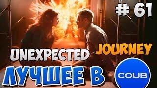 Лучшее в COUB | Unexpected Journey (тематический) #61