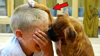 Мальчик пришел в приют, чтобы взять щенка, и тратит все свои деньги, чтобы спасти еще двух собак