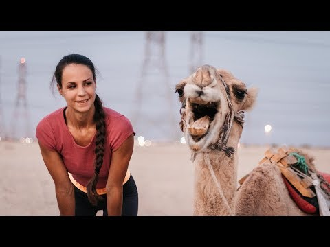 THE BEST OF KUWAIT DESERT - Funny moments with Camels