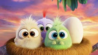 Птички поздравляют мамочку [ Angry Birds в кино ] ВИРУСНЫЙ ПРОМО РОЛИК на английском