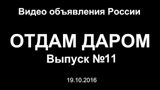Отдам даром. Выпуск №11 - Видео объявления России